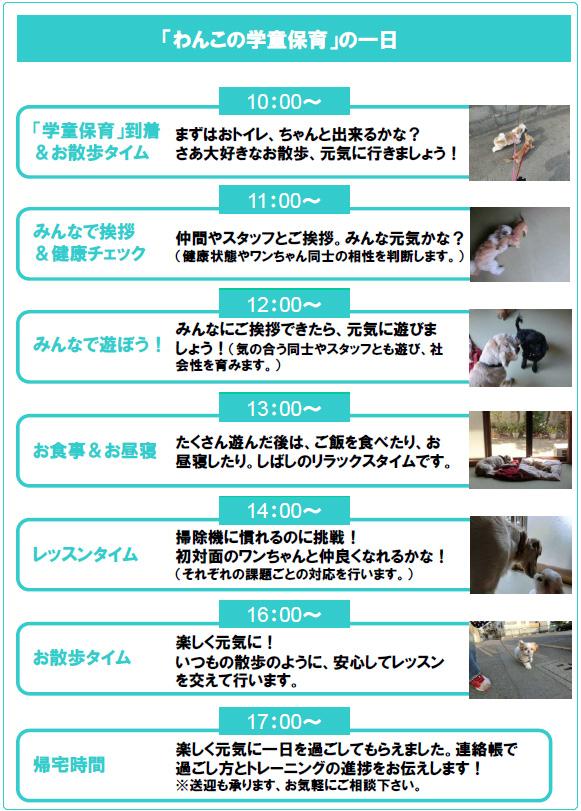 犬の保育園の一日・犬の社会化と犬のしつけ・犬同士と遊ぶ