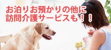 犬の訪問介護